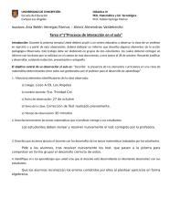 pauta informeobs.doc